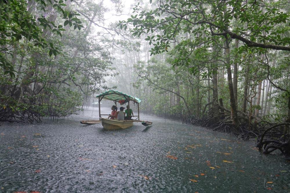 باران حاره ای - سفرنامه فیلیپین