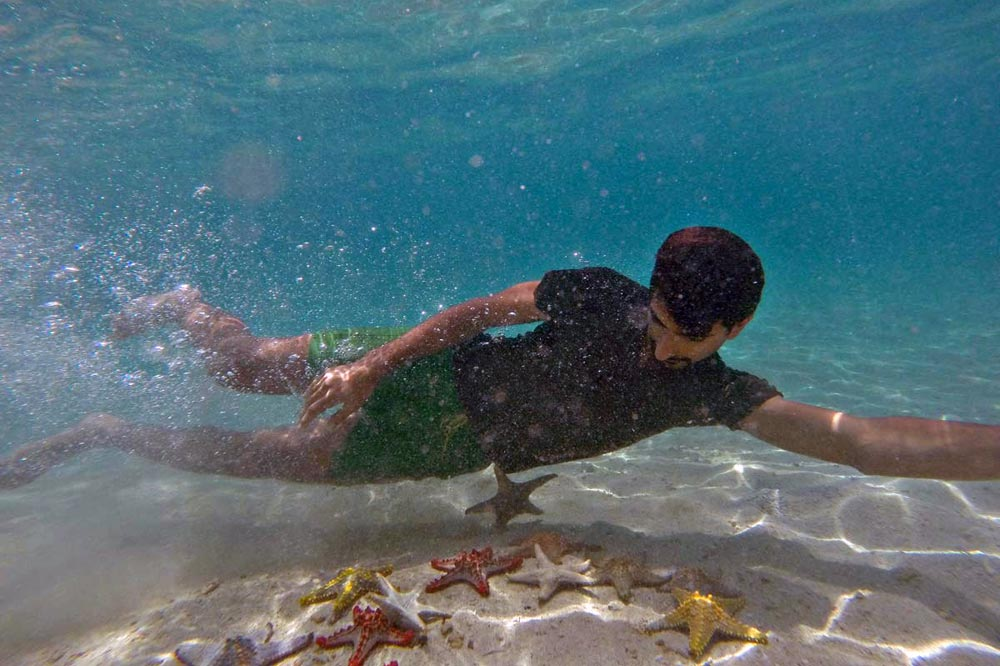 شنا با ستاره دریایی