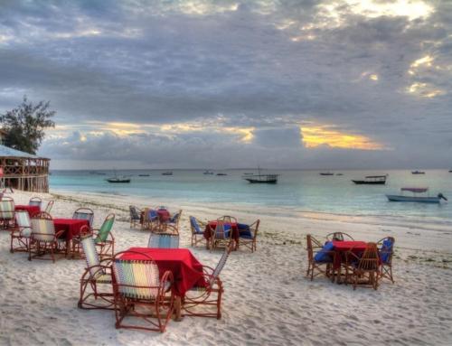 تور سافاری تانزانیا و جزیره زنگبار