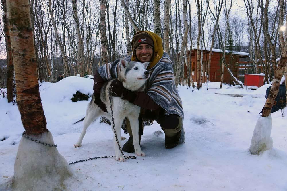 سگ سورتمه - هاسکی