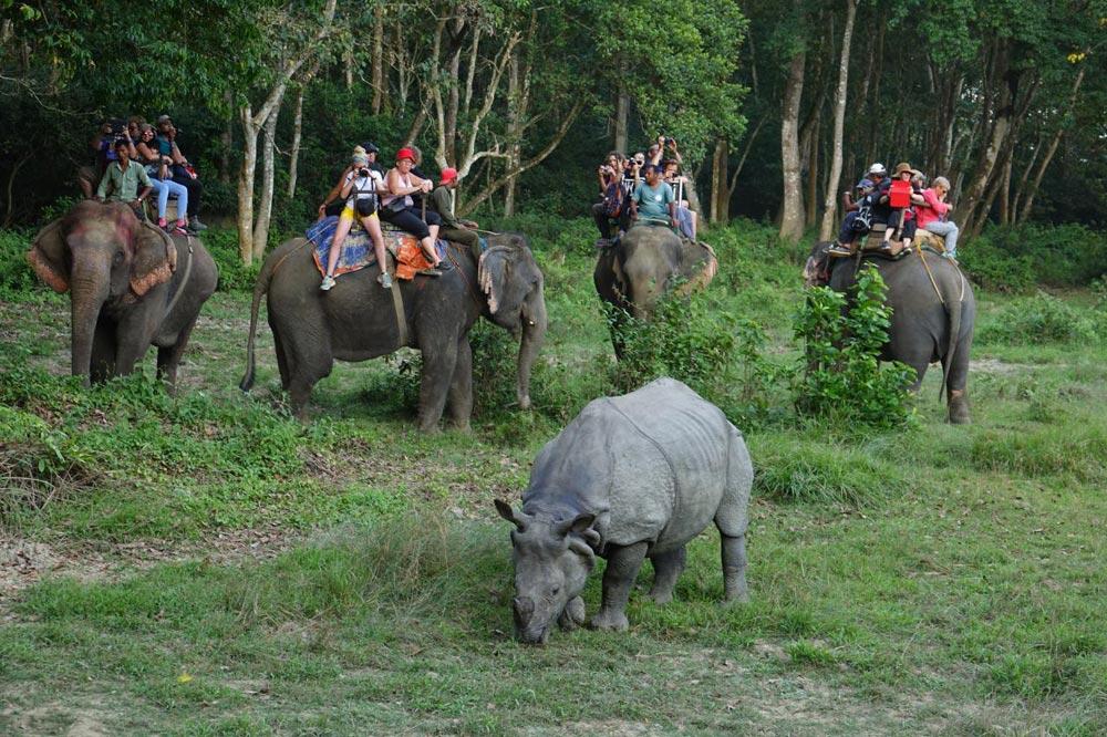 فیل سواری در چیتوان نپال
