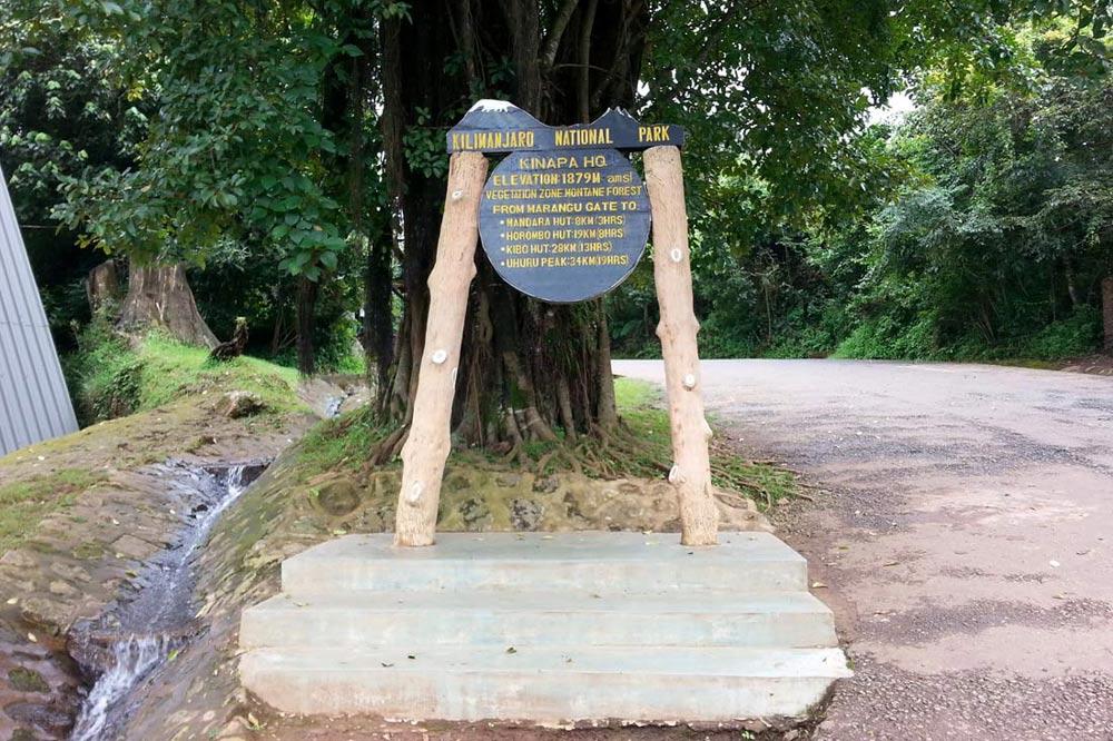 ابتدای مسیر صعود کلیمانجارو