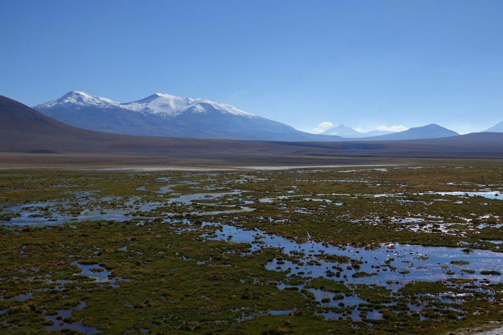 تالاب های شیلی