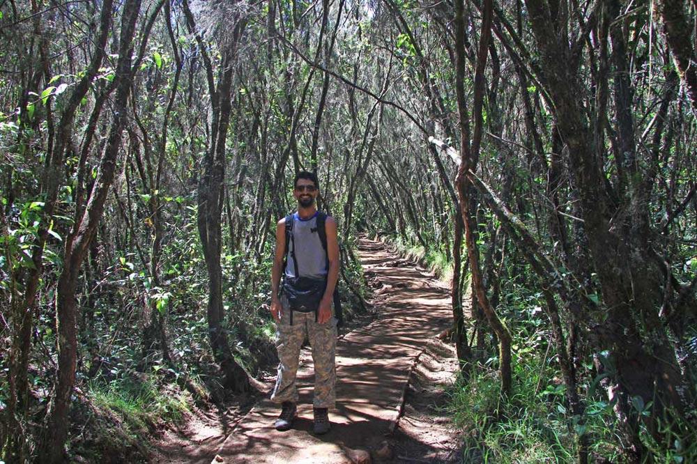 مسیر صعود کلیمانجارو