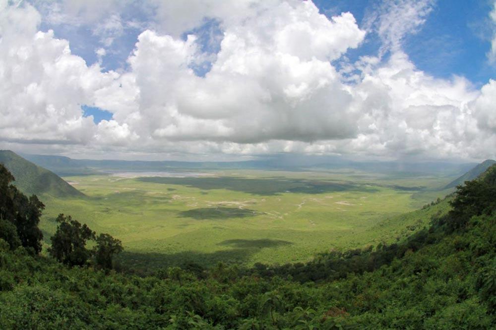 پارک ملی گورونگورو
