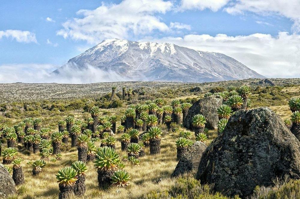 نمای قله کلیمانجارو