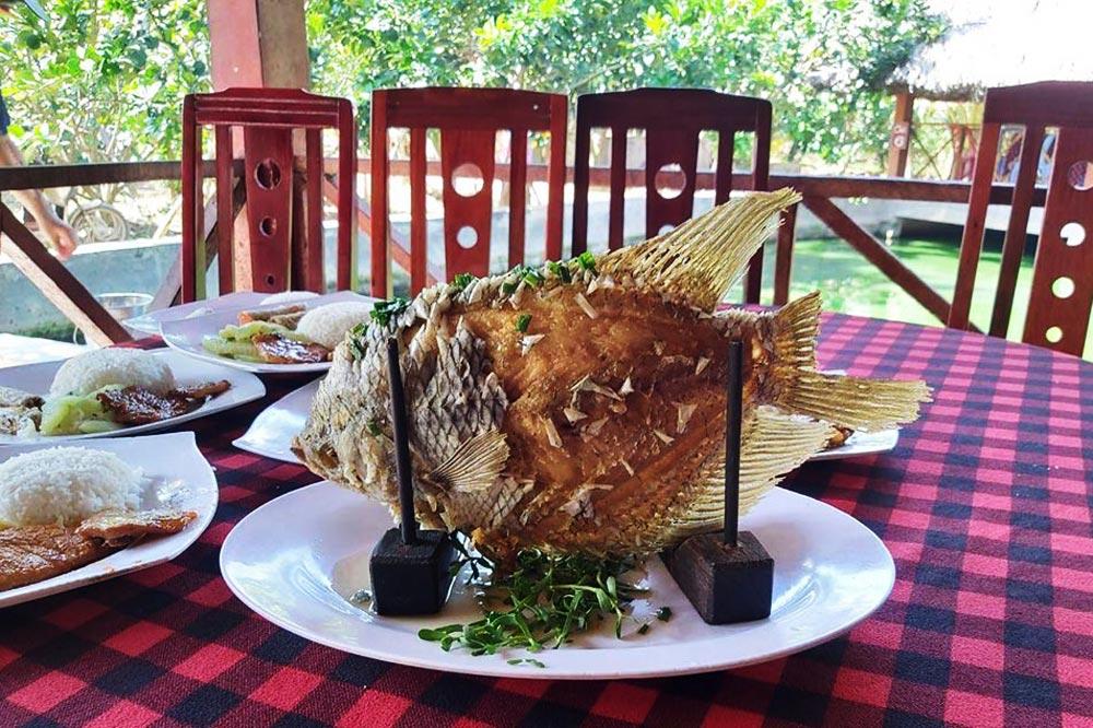 ماهی سوخاری - غذای ویتنامی