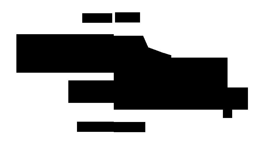 دلفین آمازون