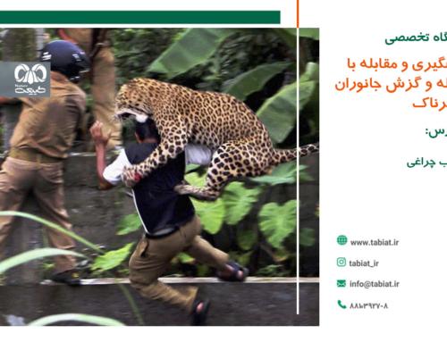 مقابله با حمله جانوران