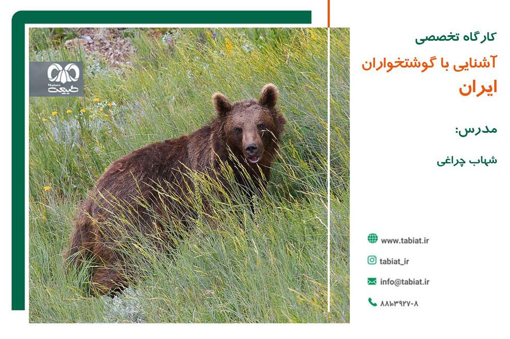 گوشتخواران ایران