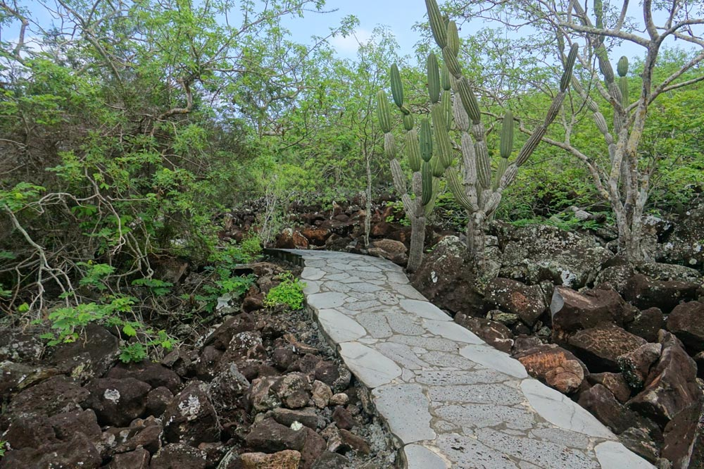 مسیر پیاده روی در گالاپاگوس