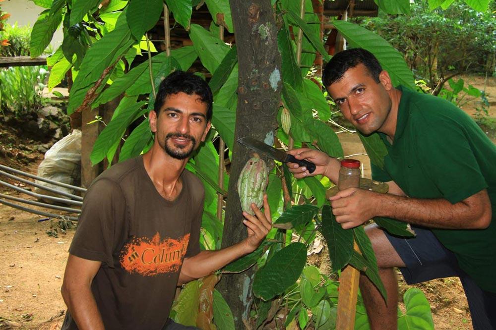 مزارع ادویه - سفرنامه سریلانکا